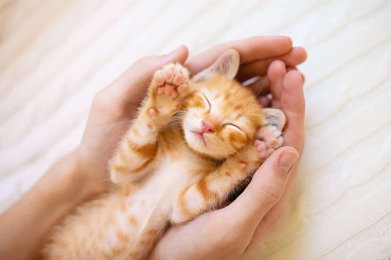 5 astuces pour avoir de belles mains tout l'année